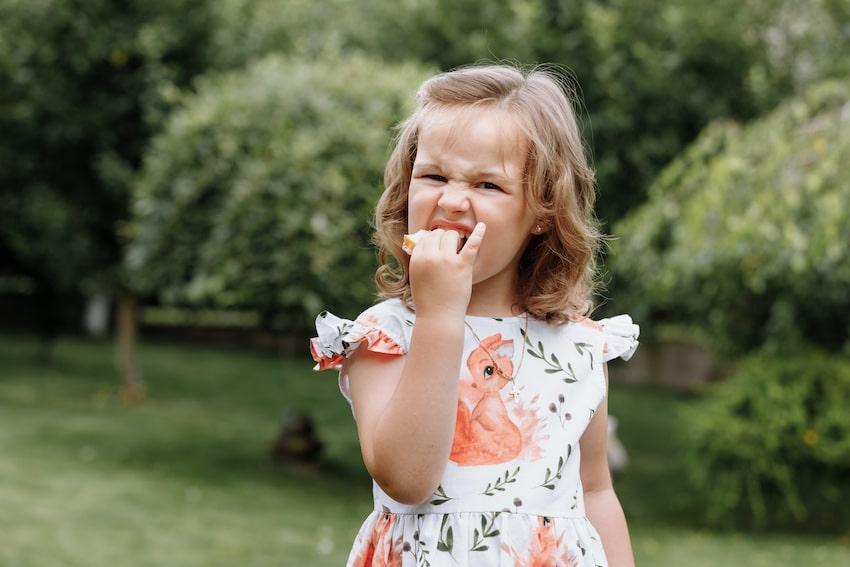 Queso para niños : por qué el queso es saludable para los niños